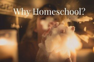 whyhomeschool