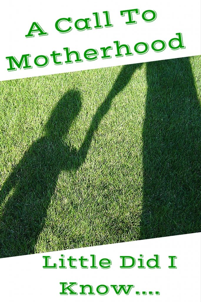 A Call To Motherhood - Little Did I Know 2 Years Later...