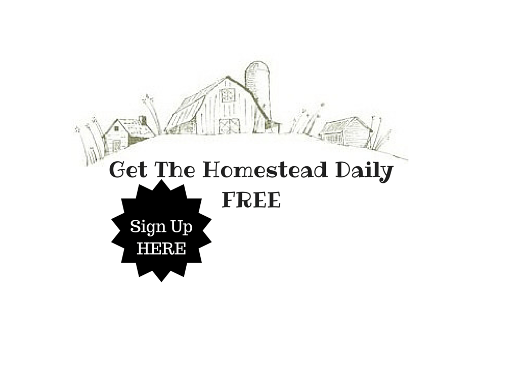 Get The Homestead DailyFREE-2