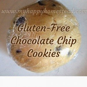 Gluten Free Chocolate Chip Cookies; Quick and Easy - Make ahead and freeze for later