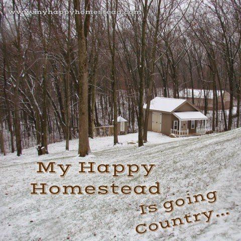 Homestead, self sufficiency, new start, family, faith, hope, love,