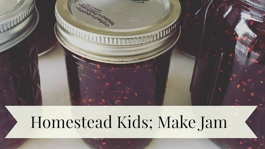 Homestead Kids Make Spiced Strawberry Raspberry Jam - Free Printable Recipe and How to Can Video