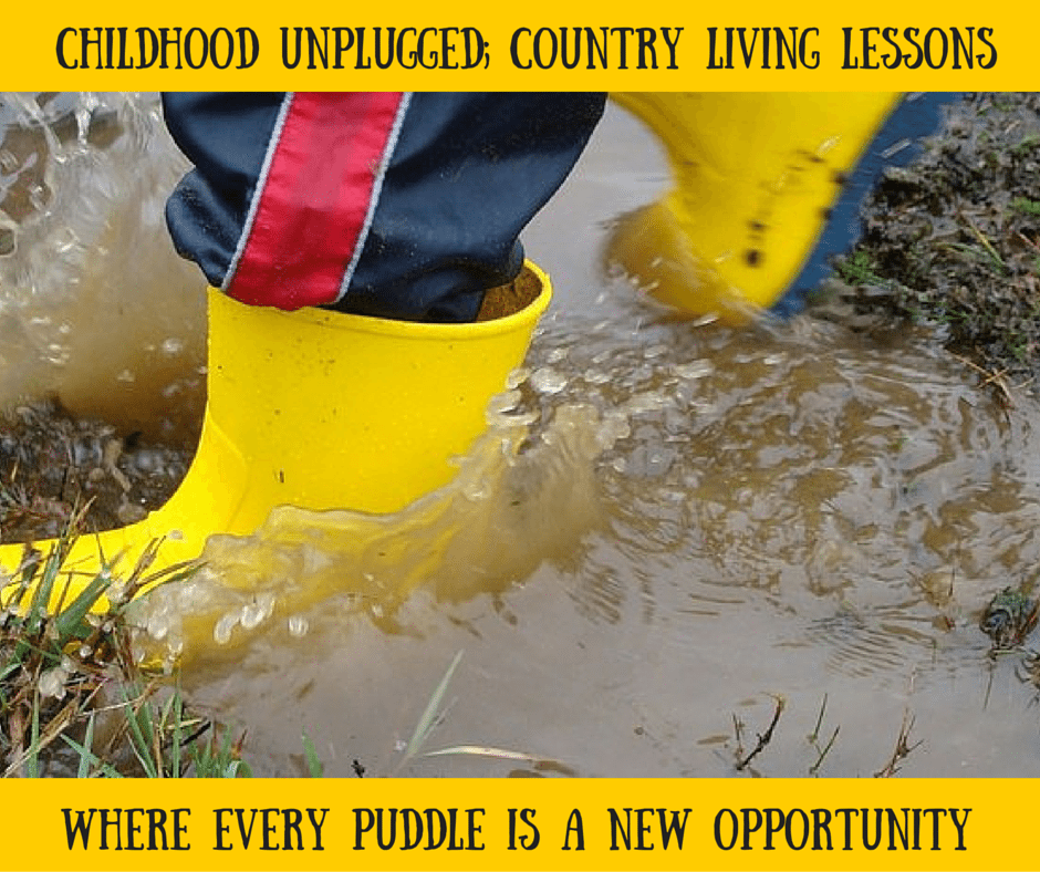 Childhood Unplugged; Country Living Lessons
