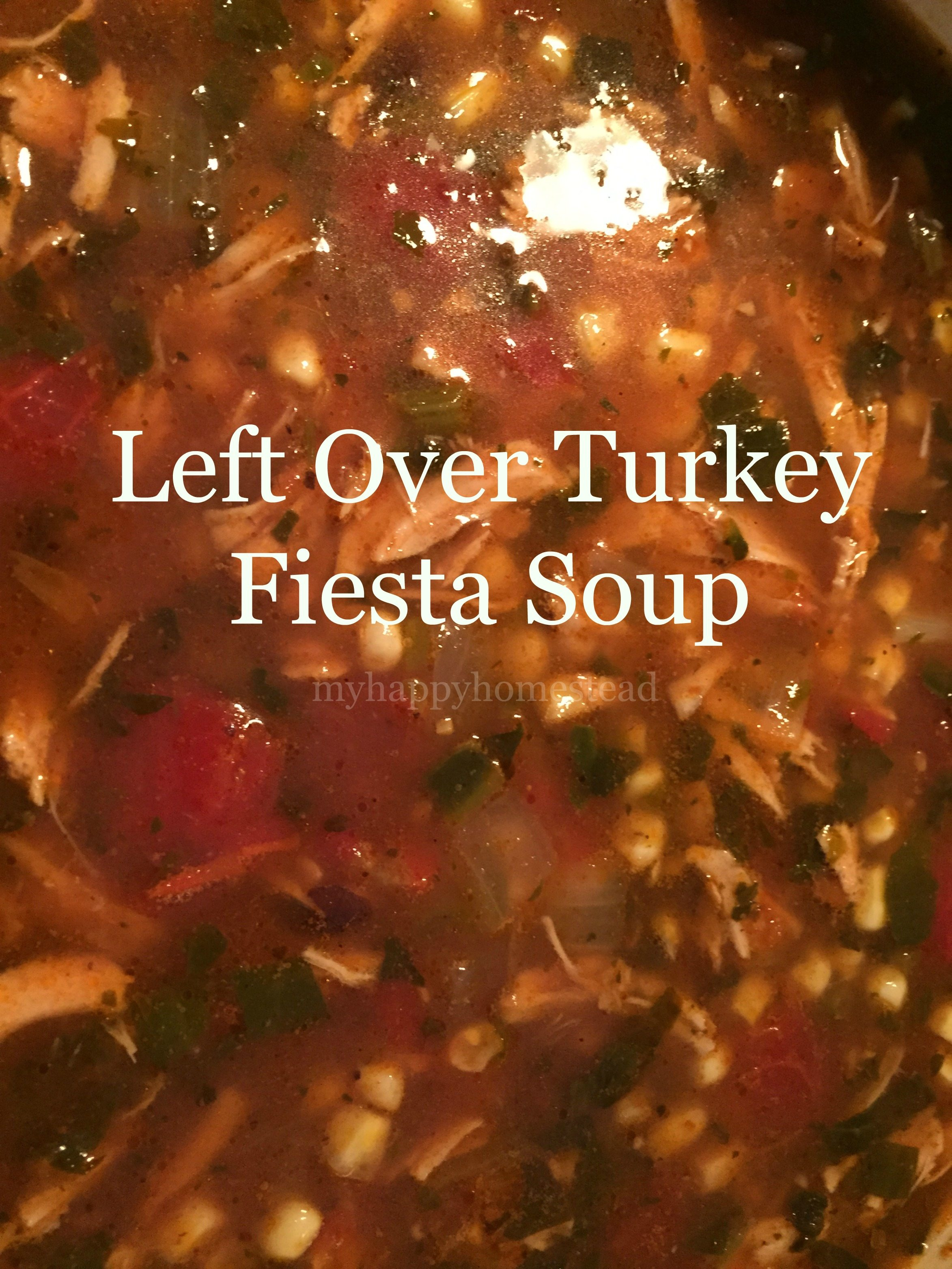Left Over Turkey Fiesta Soup