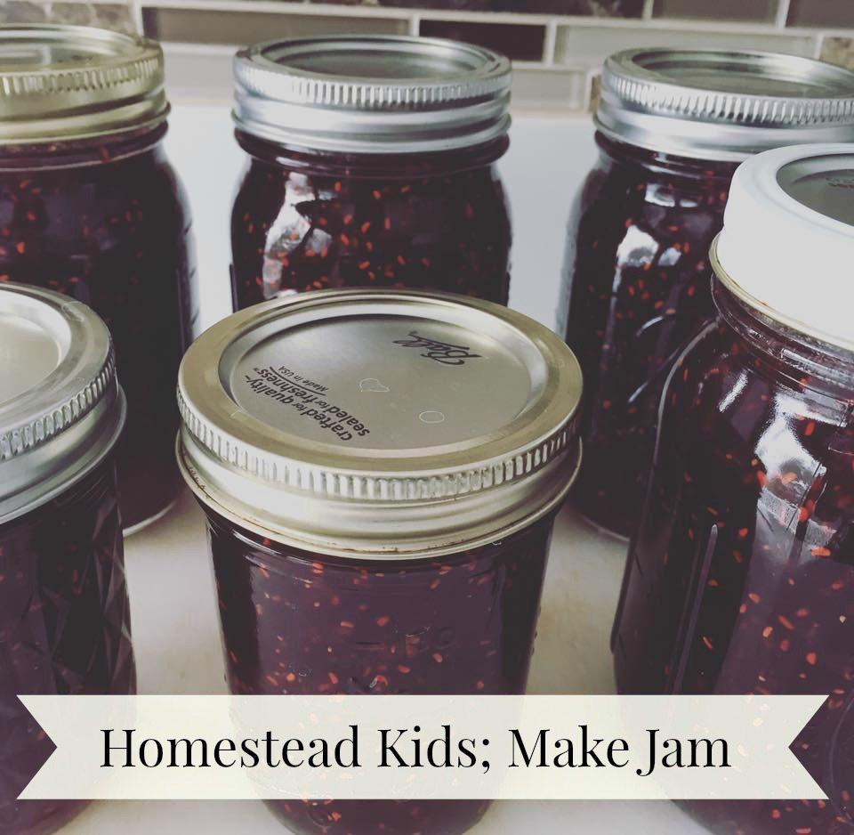Homestead Kids Learn How to Make Strawberry Raspberry Spiced Jam