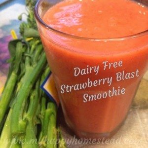 Dairy Free Strawberry Smoothie Recipe - or make it regular milk or raw milk too!! Mom and Kid approved! Great summer treat..