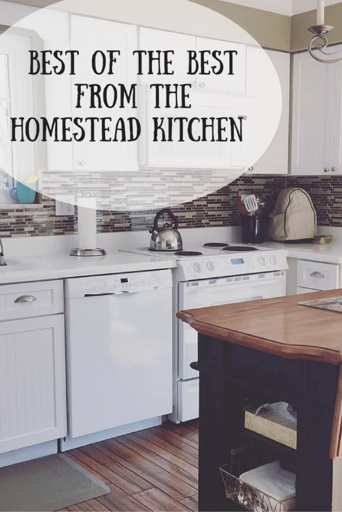 Welcome To The Homestead Kitchen   Featuring The Best Of The Best From  Scrumptious Dinners,