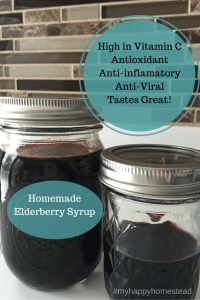 Homemade ElderberrySyrup