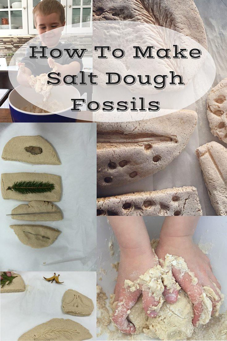 how to make salt dough fossils jenny irvine