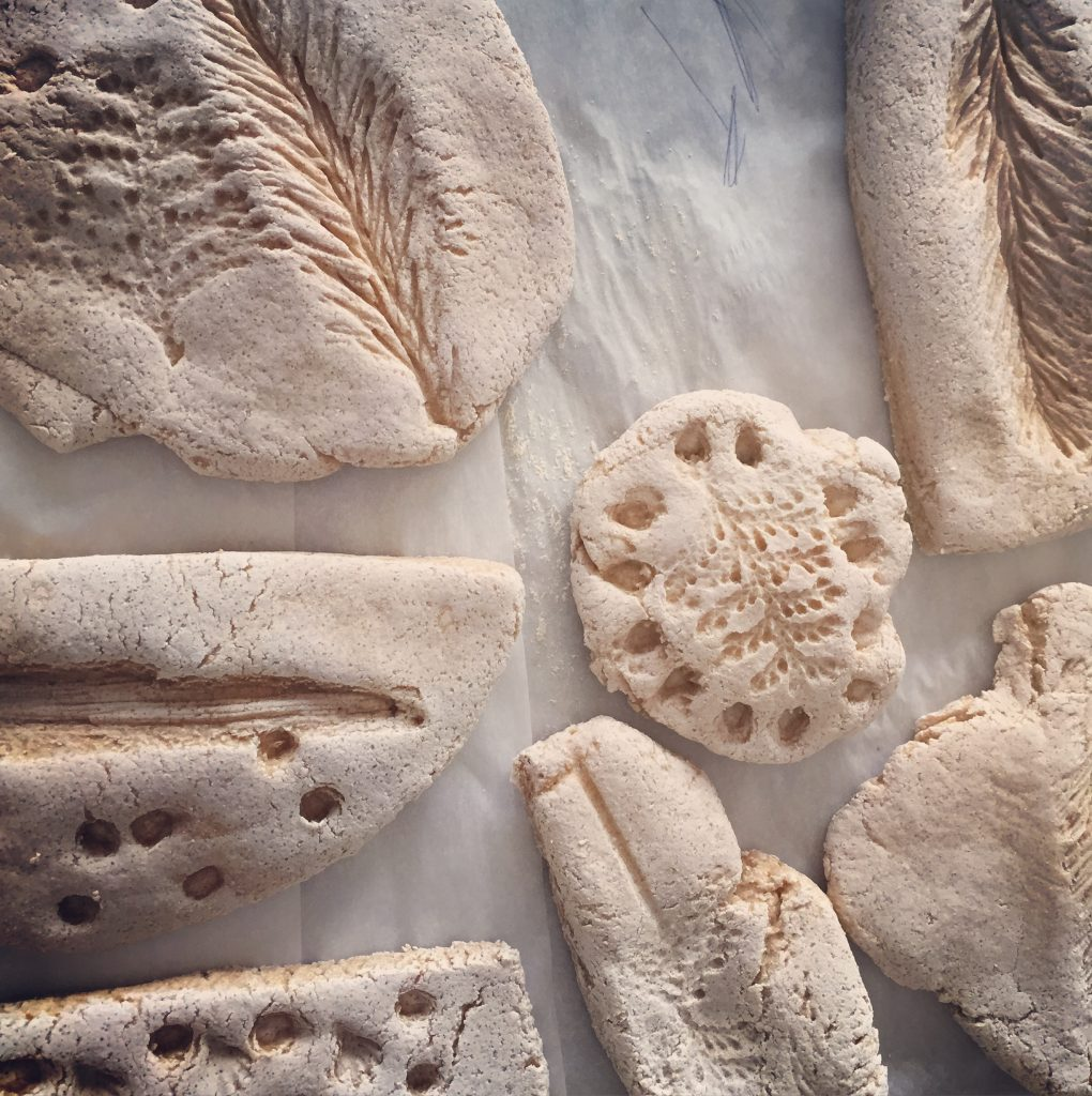 How to Make Salt Dough Fossils